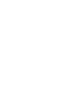 Feature 1 Icon